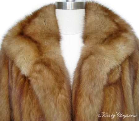Golden Russian Sable Stroller Coat Gs682 Furs By Chrys