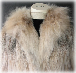 Lynx Coat Collar Close Up image