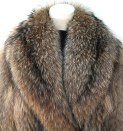 Tanuki Raccoon Stroller Coat Collar Close Up image