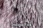 Indigo Fox fur image