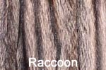 Raccoon fur image